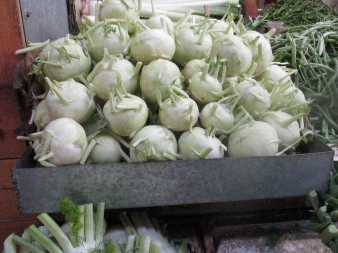 Кольраби: непростая родственница традиционной капусты